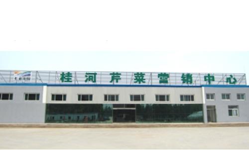 寿光桂河芹菜营销中心